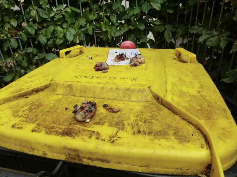 Verendete Tiere auf dem Mülleimer entsorgt.