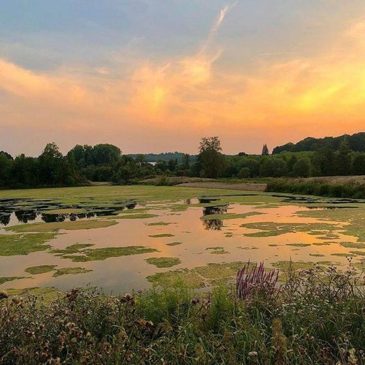Die Oesewiesen in Menden (Sauerland)